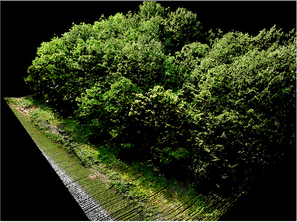 True View EVO Software Above Surface Preservation Colorized Point Cloud