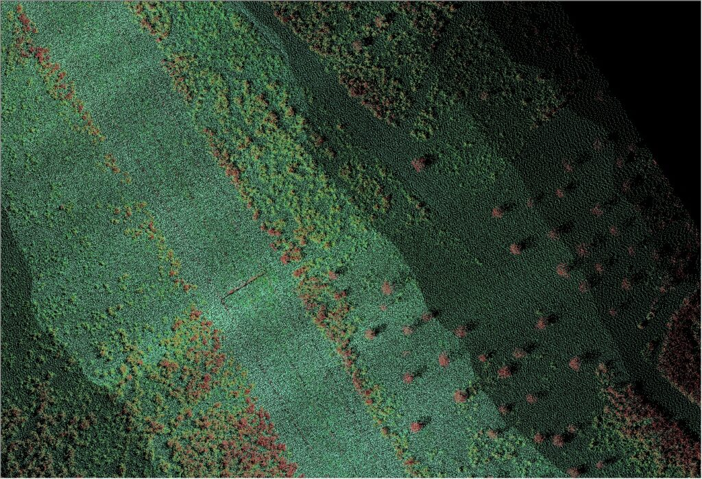 LIDAR Data Colorized By Elevation